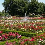Portland's best summer spot's